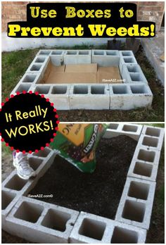 Use Boxes in a Raised Garden to Prevent Weeds