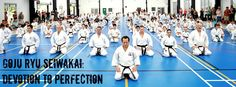 Goju Ryu Karate do Seiwakai #seiwakai #karate #gojuryu