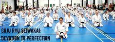 Goju Ryu Karate do Seiwakai #seiwakai #karate #gojuryu