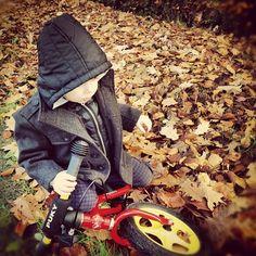 Autumn Happiness  Photo by johansmeyers