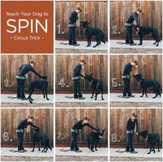 Dog Hand Signals Chart Bing Images Deaf Dog Pinterest Dogs