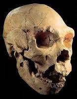 Yacimiento de Atapuerca - Google Search Burgos, Spain