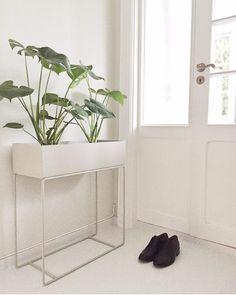 """""""Green Living!  We love it  Plantbox i grått, svart, ochre og blå finner du hos oss! Vi er superfornøyd med vår ✨ Vi har ikke grønne fingre, men disse…"""""""