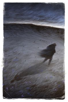 Rovina Cai (b. New York City, USA based) - Illustrations for The Folio Society's edition of Wuthering Heights by Emily Brontë, 2014 Drawings: Graphite, Digital Colors Art And Illustration, Wuthering Heights, Nocturne, Dark Art, Art Inspo, Fantasy Art, Cool Art, Graphic Art, Art Drawings