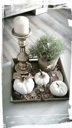 Herbstdeko - Beautiful decoration with the autumn vegetable pumpkin! Herbstdeko – Beautiful decoration with the autumn vegetable pumpkin! Diy Crafts To Do, Fall Crafts, Fall Home Decor, Autumn Home, Thanksgiving Decorations, Christmas Decorations, Deco Floral, Victorian Decor, White Pumpkins