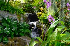 What a tranquil waterfall.  http://myinspiredtreasure.weebly.com Find us on Facebook at www.facebook.com/myinspiredtreasure