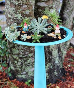 Turn an Old Bird Bath Into a Succulent or Fairy Garden