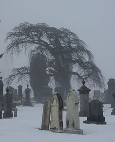 Cemetery in the mist