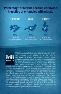 Environmental Awareness for Non-Profit (Poster) — Quantum Design Lab (Print. W… – Ocean Trash Environmental Posters, Environmental Science, Design Lab, Web Design, Graphic Design, Ocean Pollution Facts, Use Of Plastic, Plastic Bags, Exhibition Poster