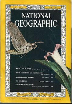 June 1965 National Geographic Moths Wales Alaska's Marine Highway Sand Dunes