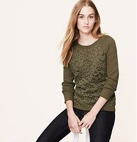 Lace+Front+Sweatshirt+-+We+perfected+lacy-day+cool+with+this+slubbed+cotton+fave.+Ballet+neck.+Long+raglan+sleeves.+Lace+front.+Solid+back.+Ribbed+neckline,+cuffs+and+hem.