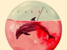 Animal Quotes, Animal Rights & Compassion Wakayama, Sea Shepherd, Network For Good, Killer Whales, Sea World, Make A Donation, Life Savers, Animal Quotes, Animal Rights