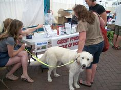 Applications are now available for the 2012 event! Get yours in today! http://www.petfestmontana.com