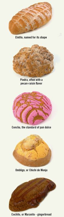 Some kind of Sweet breads (pan dulce) of México and their names.