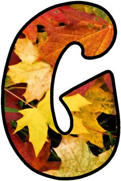 Monogram Alphabet, Alphabet And Numbers, Print Letters, The Last Leaf, Fall Boards, Tropical Party, Fall Leaves, Flower Prints, Smiley