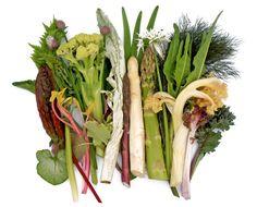 Vaste groenten in de moestuin. Tips van Peter Bauwens van De Nieuwe Tuin.