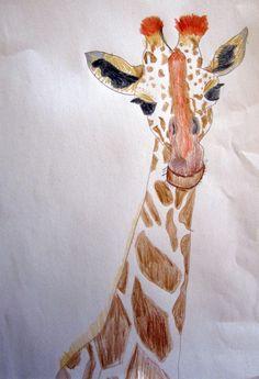 Giraffe drawing by Emily Flippin Maruna