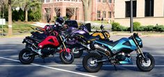 Groms and Groms | Honda Grom Forum