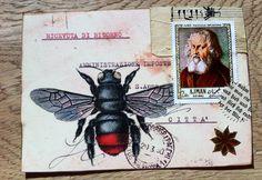 Mail art bee Lara Irwin                                                                                                                                                                                 More