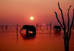 Kariba Dam, Zimbabwe: Best sunsets on earth never seen any better!