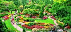 garden world images - Google'da Ara