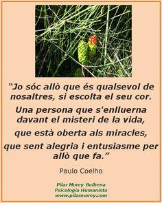 """Paulo Coelho: """"Jo sóc allò que és qualsevol de nosaltres, si escolta el seu cor. Una persona que s'enlluerna davant el misteri de la vida, que està oberta als miracles, que sent alegria i entusiasme per allò que fa"""""""