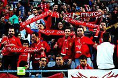 Galería de imágenes del Real Murcia 2 – Sporting de Gijón 1 | Interdeportes.es
