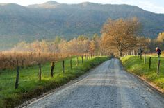 Hyatt Lane/ Cades Cove Loop Road