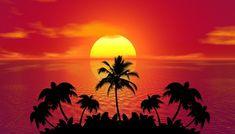 Free Image on Pixabay - Tropical, Summer, Sunset, Beach Sunset Images, Beach Images, Sunset Pictures, Beach Pictures, Pictures Images, Sunset Pics, Amazing Pictures, Funny Images, Free Images