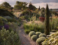 30 Best Dry Garden Ideas Images Dry Garden Gardens Landscaping
