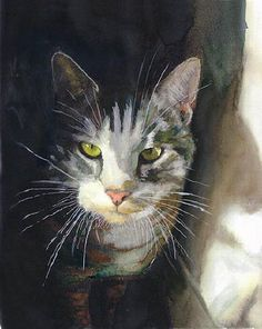 Portrait of cat. Alex Carter. Love the light and shadows of this one.
