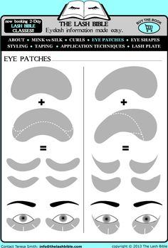 THE LASH BIBLE - Eyelash information made easy.
