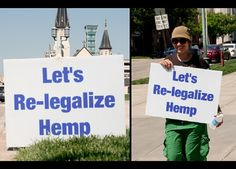 Learn which states recently voted for hemp legalization. There are various different Senate bills that have put hemp in the forefront. Medical Cannabis, Cannabis Oil, Weed Pictures, Marijuana Plants, Buy Weed Online, Ganja, I School, Hemp Oil, Bud