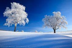 Photograph Frozen world by Vincent BOURRUT on 500px