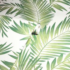 Wallpapering just got a whole lot easier 🙌 Our self-adhesive range means you no longer need wallpaper paste! You're just a peel and stick away from the interior of your dreams 💭 - #iwwroom #interiordesigntips #interiordesignlife #interiordesignuk #interiordesigncontemporary #junglevibes #jungledecor #junglehome #junglehouse #jungledesign #tropicalhouse #tropicalhome #tropicaldecor Wallpaper Direct, Wallpaper Paste, Print Wallpaper, Self Adhesive Wallpaper, Wallpaper Roll, Peel And Stick Wallpaper, Pattern Wallpaper, Normal Wallpaper, Palm Leaf Wallpaper