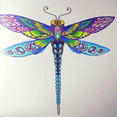 Johanna Basford | Colouring Gallery - Enchanted Forest - dragonfly