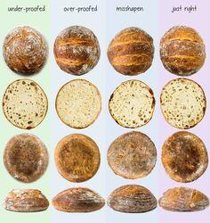 Goldie Locks Bread Proofing