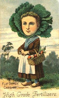 Cabbage Head Woman