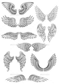 Heraldic bird or angel wings set isolated on white for religious,. Heraldic bird or angel wings set isolated on white for religious,. Heraldic bird or angel wings set royalty-free stock vector art Body Art Tattoos, Tattoo Drawings, Art Drawings, Sleeve Tattoos, Tattoos Skull, Dove Tattoos, Star Tattoos, Angel Wings Drawing, Tattoo Angel Wings