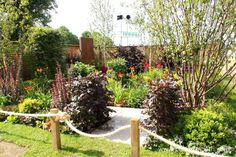 The Foundations for Growth Garden was designed by VaRa Garden Design and built by Capel Manor College.