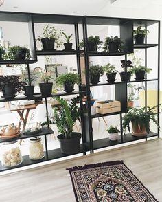 Musholla at #ndalemkrisikan . . #plants #musholla #interiordesign #desainrumah