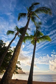 Let's go to Hawaii – the Magical Tropical Islands - Kauai Beach, Hawaii