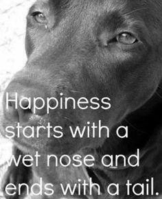 So true aw :) i love dogs