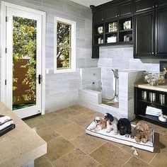 Self Service Dog Wash Near Me Inspiration for Laundry Room with Black Cabinets Dog Bath Pet Bath Pet Suite Animal Room, Built In Dog Bed, Casa Art Deco, Standard Pacific Homes, Crazy Home, Dog Washing Station, Casa Loft, Dog Spaces, Dog Rooms