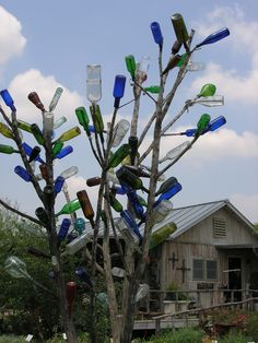 Placing bottles on trees and bushes originated in Africa and Haiti from the people forced into slavery and made to leave their country.  It is said, that the bottle captures evil spirits before they enter the home keeping those inside safe from harm.