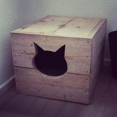 Kattenbak, steigerho