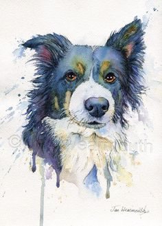 Custom Portrait of your pet - hand painted to order An original custom painting of your pet in pen, ink and watercolour on artist quality