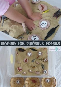 Digging For Dinosaur Fossils Sensory Bin: I previously shared an activity here on How to make Dinosaur Fossils? This is how we played with them! We simply painted white circles onto the back of the dinosaur fossils and with a black permanent marker pen d Dinosaurs Preschool, Dinosaur Activities, Dinosaur Crafts, Dinosaur Fossils, Alphabet Activities, Sensory Activities, Preschool Activities, Dinosaur Dinosaur, Speech Activities