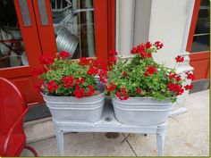 More washtub planters. So pretty filled with those red geraniums.