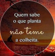 Who knows what he plants, is not afraid of reaping… Good Thoughts, Positive Thoughts, Portuguese Quotes, More Than Words, True Words, Quote Of The Day, Favorite Quotes, Quotations, Me Quotes